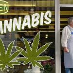 Marijuana Industry Advancements