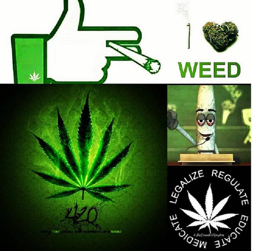 Cannabis Apps