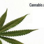 Top Amazing Benefits Of Cannabis Oil