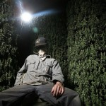 Top Marijuana Documentaries To Watch