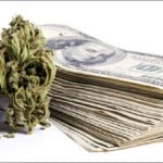 Top Investors in the Cannabis Industry