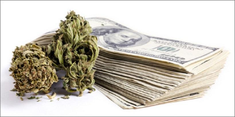 Marijuana Industry investors. Stack of money next to cannabis