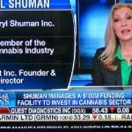 Cannabis CEO's. Marijuana CEO's.