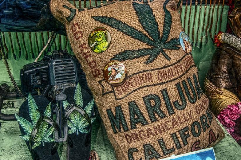 Marijuana Companies