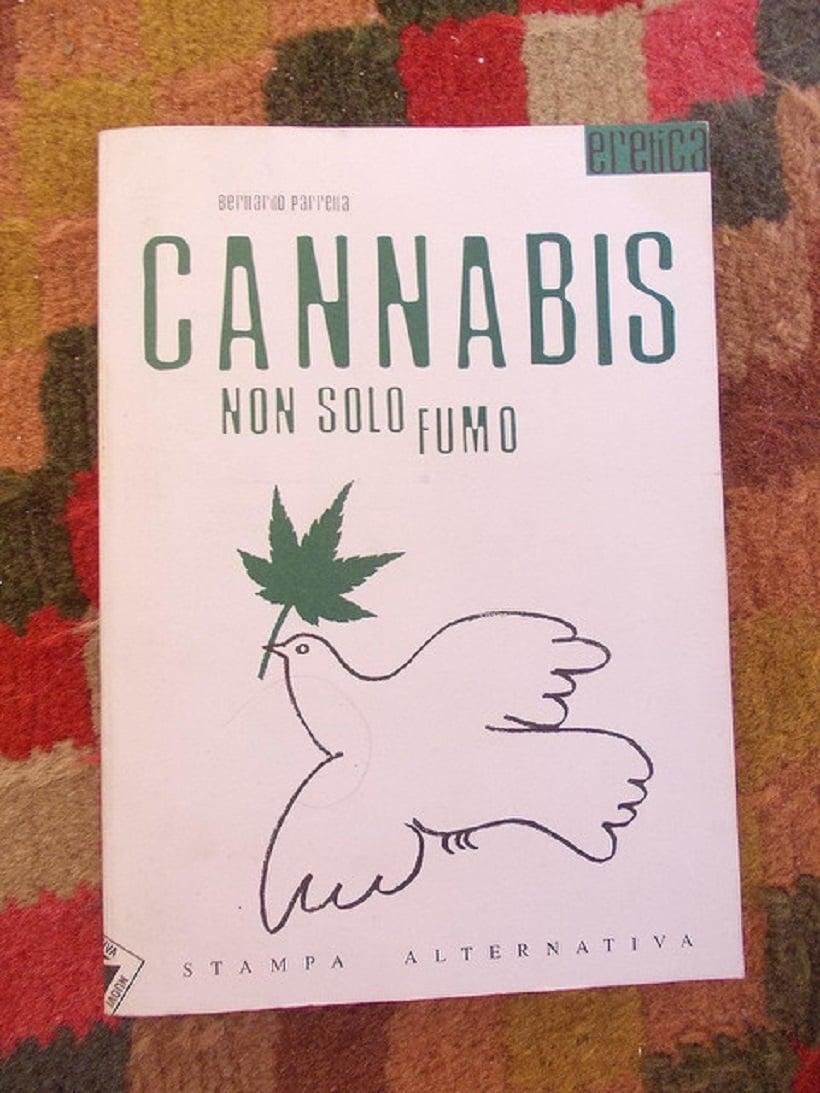 Top Cannabis Books. Cannabis book on rug.