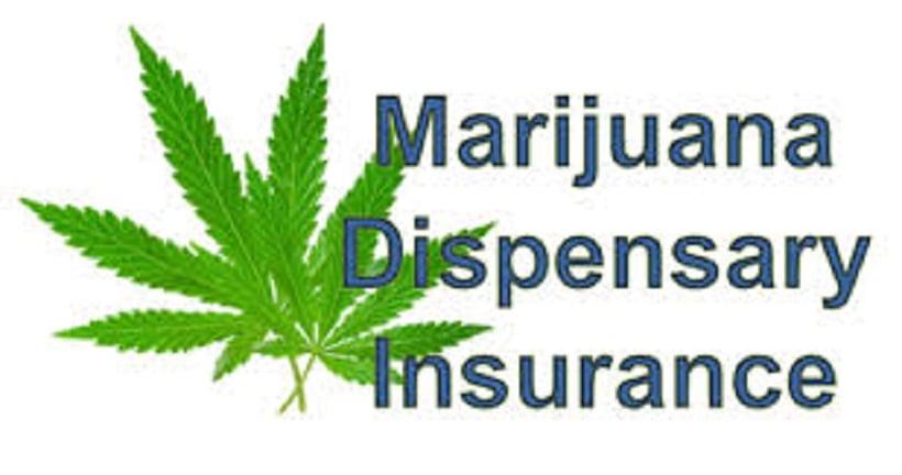 Best Cannabis Insurance Companies. Weed leaf.