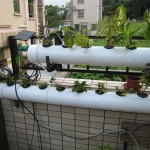Top Indoor Hydroponic Systems
