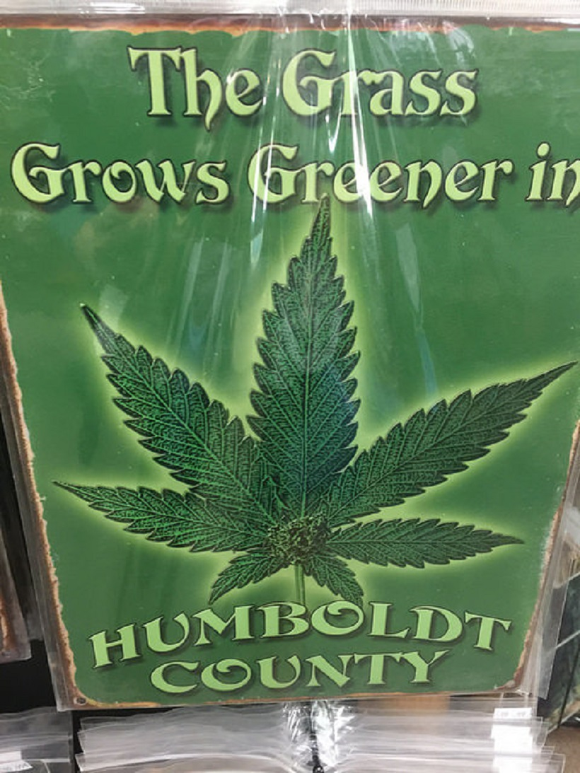 """Marijuana products in Humboldt County. """"The grass grows greener in Humboldt County"""" sign."""