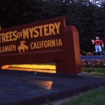 Best Tourist Events in Humboldt County