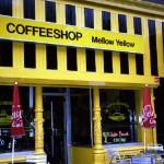 Cannabis Coffee Shops