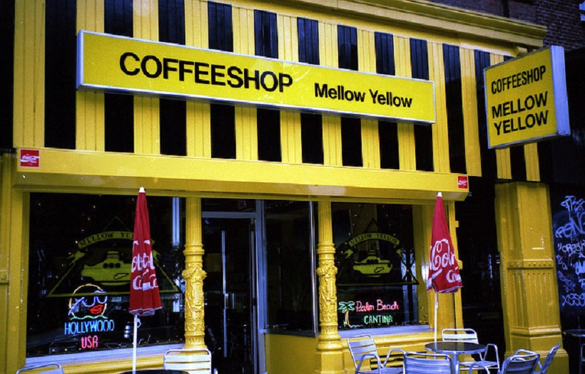 Best marijuana shops in Amsterdam.