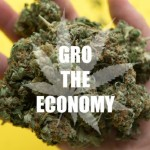 Top Marijuana Strains That Affected The Industry