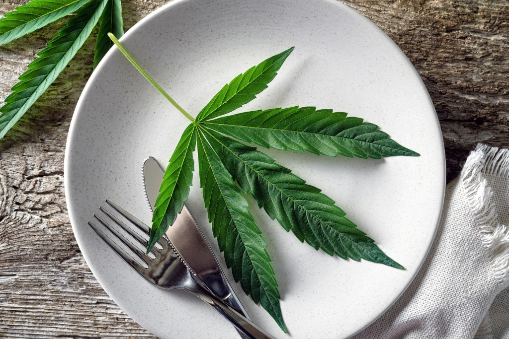 Best Cannabis Recipes To Make
