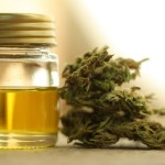 Best CBD Products On The Market For 2018