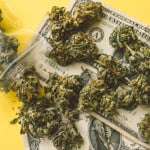 Top 5 Industries Affected By Cannabis Legalization