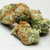 Best marijuana strains for 2018