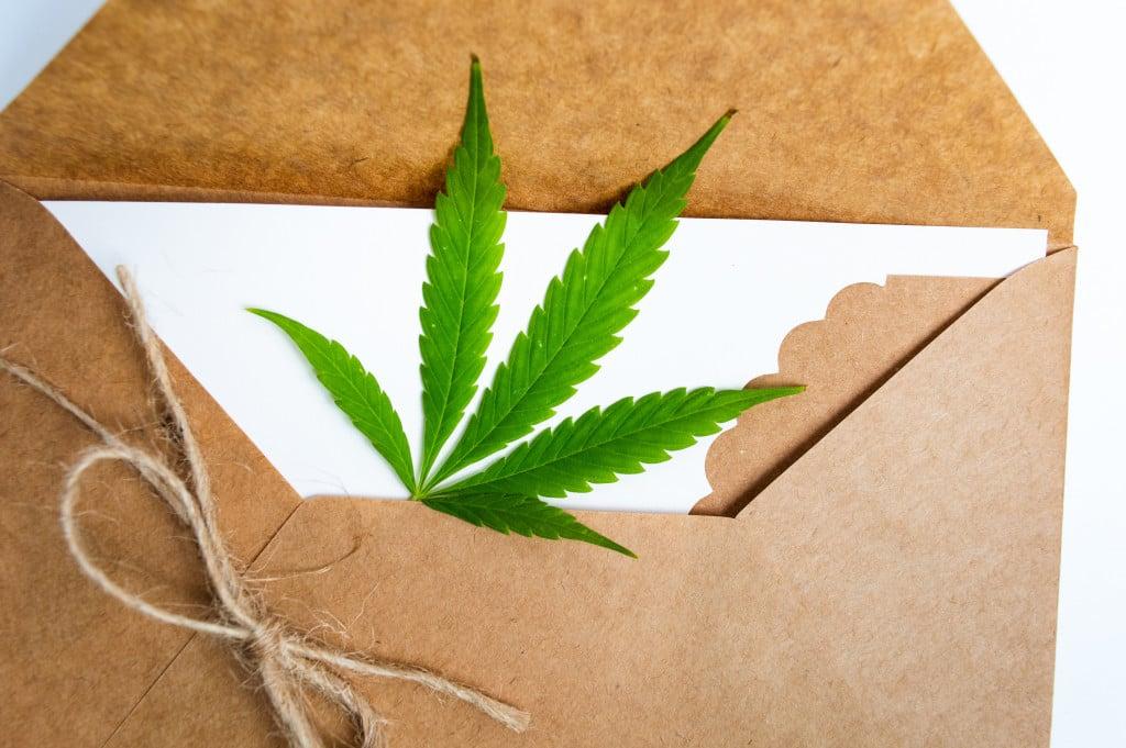 Top Marijuana Delivery Services in Colorado. Weed leaf in envelope.