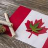 Canadians with marijuana influence. Canadian flag with marijuana