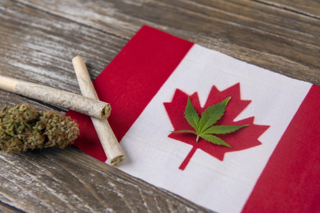 Canadians with marijuana influence. Canadian flag with marijuana.