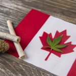 Canadians with marijuana influence. Canadian flag with marijuana