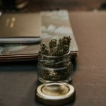 Marijuana Strains With The Highest THC