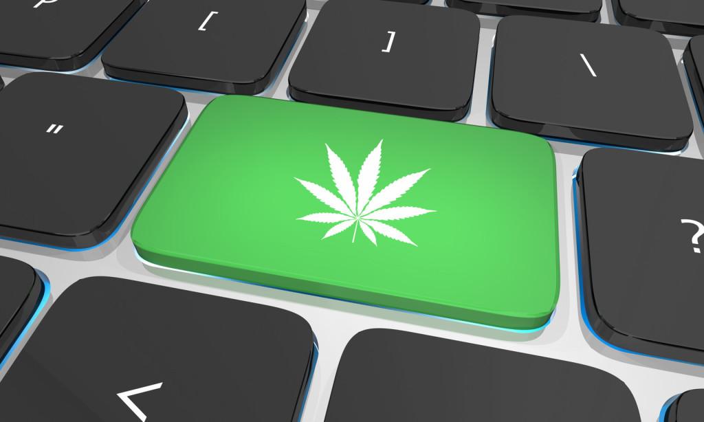 Top Cannabis Blogs Online