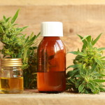 Top Myths About Heightened CBD in Cannabis