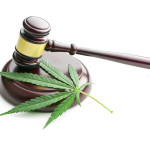 Cannabis legislation