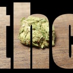 THC Facts That Make You Smile