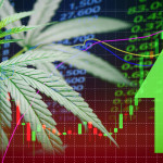 Top Marijuana Stocks To Purchase