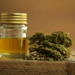 Top Ranked CBD Oils