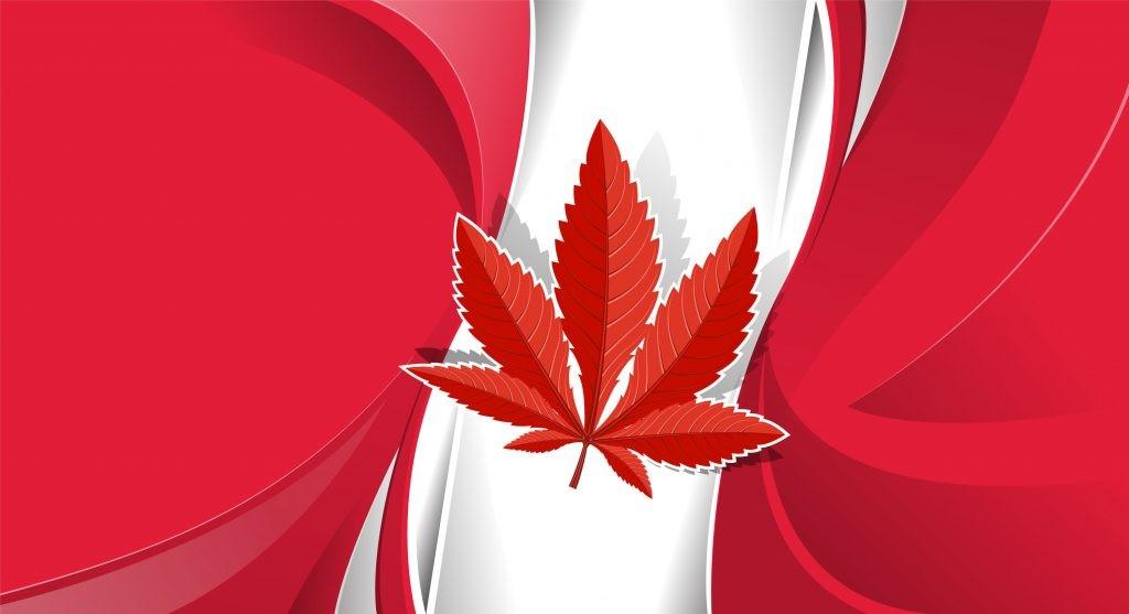 Top Three Canadian Marijuana Companies Competing For High Profits