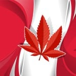 Canada cannabis businesses. Canadian flag with a cannabis flag.