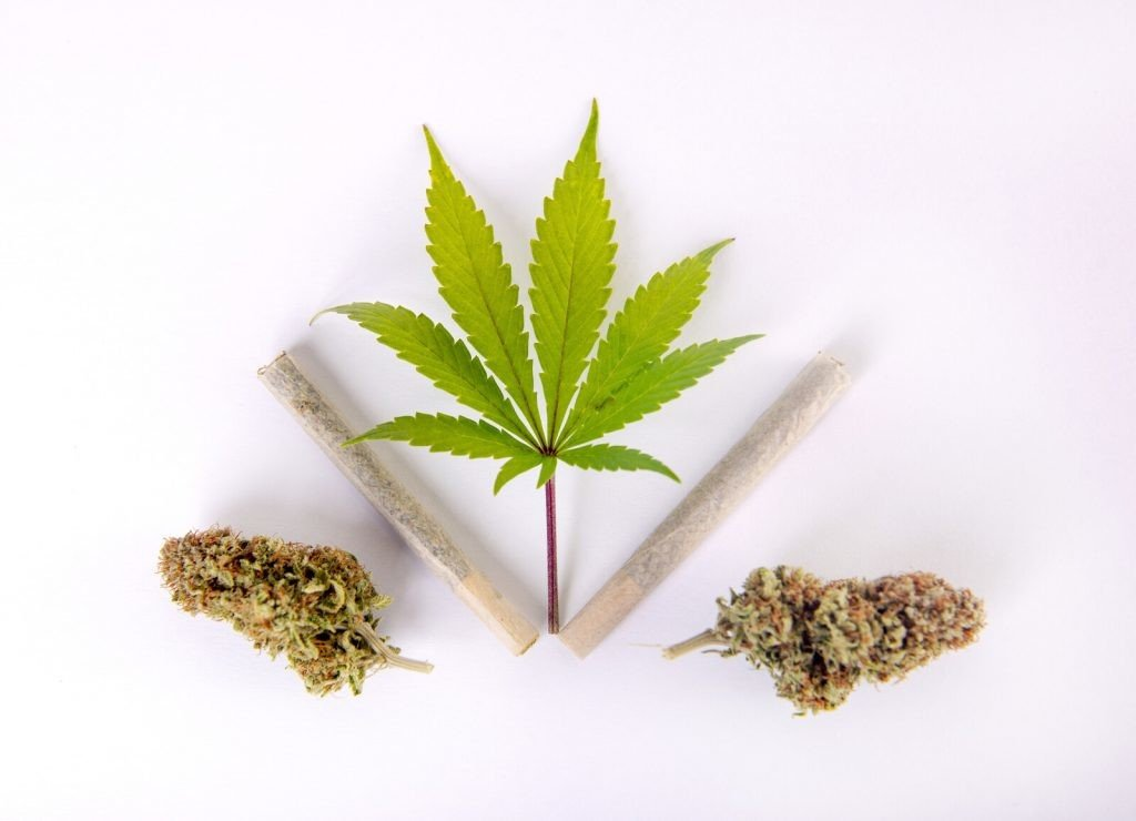 Top Ways Marijuana Legalization By Feds is Important. Marijuana leaf, blunt, and buds.