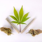 Top Ways Marijuana Legalization By Feds is Important. Marijuana leaf, blunts and buds.