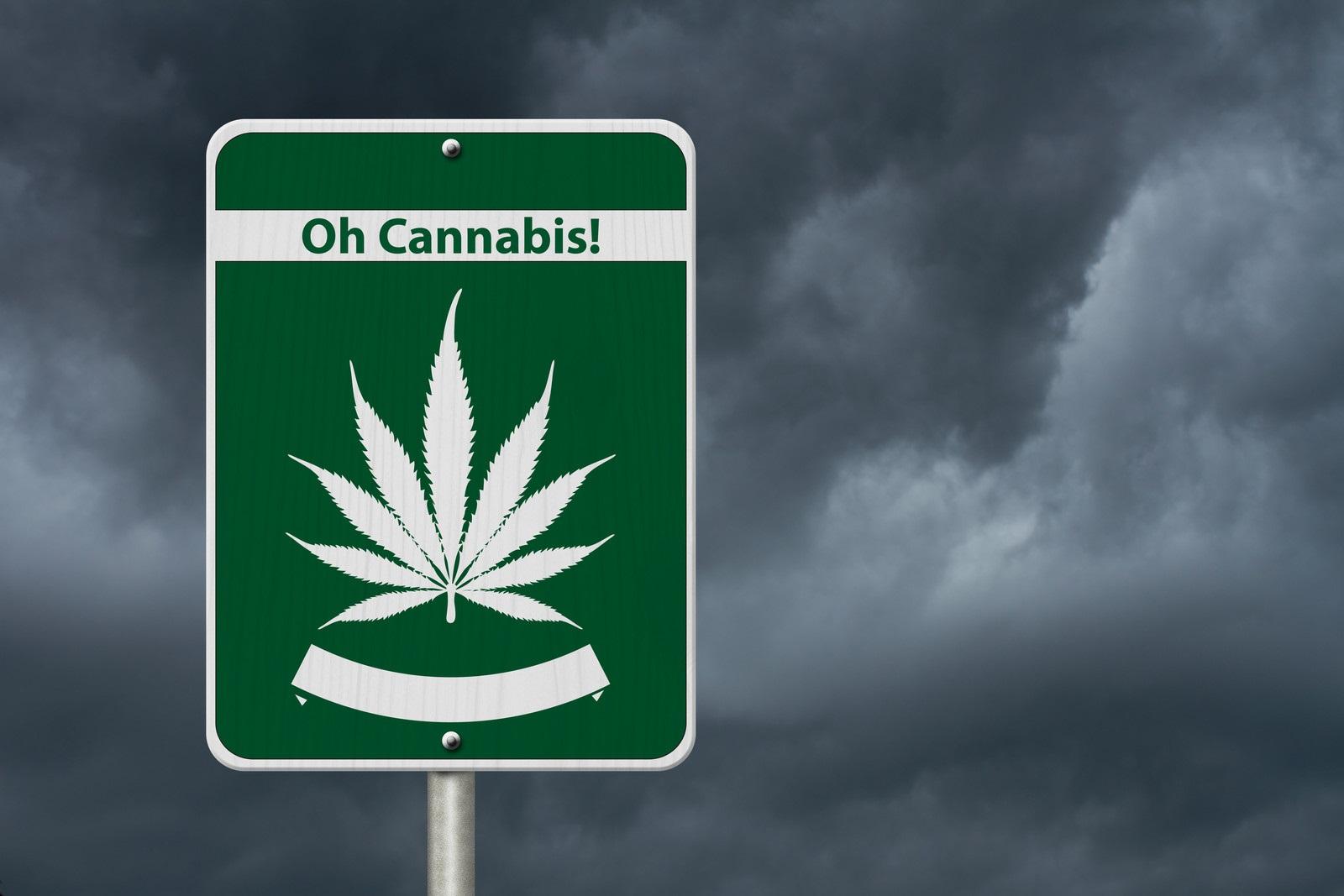 Canada recreational marijuana products