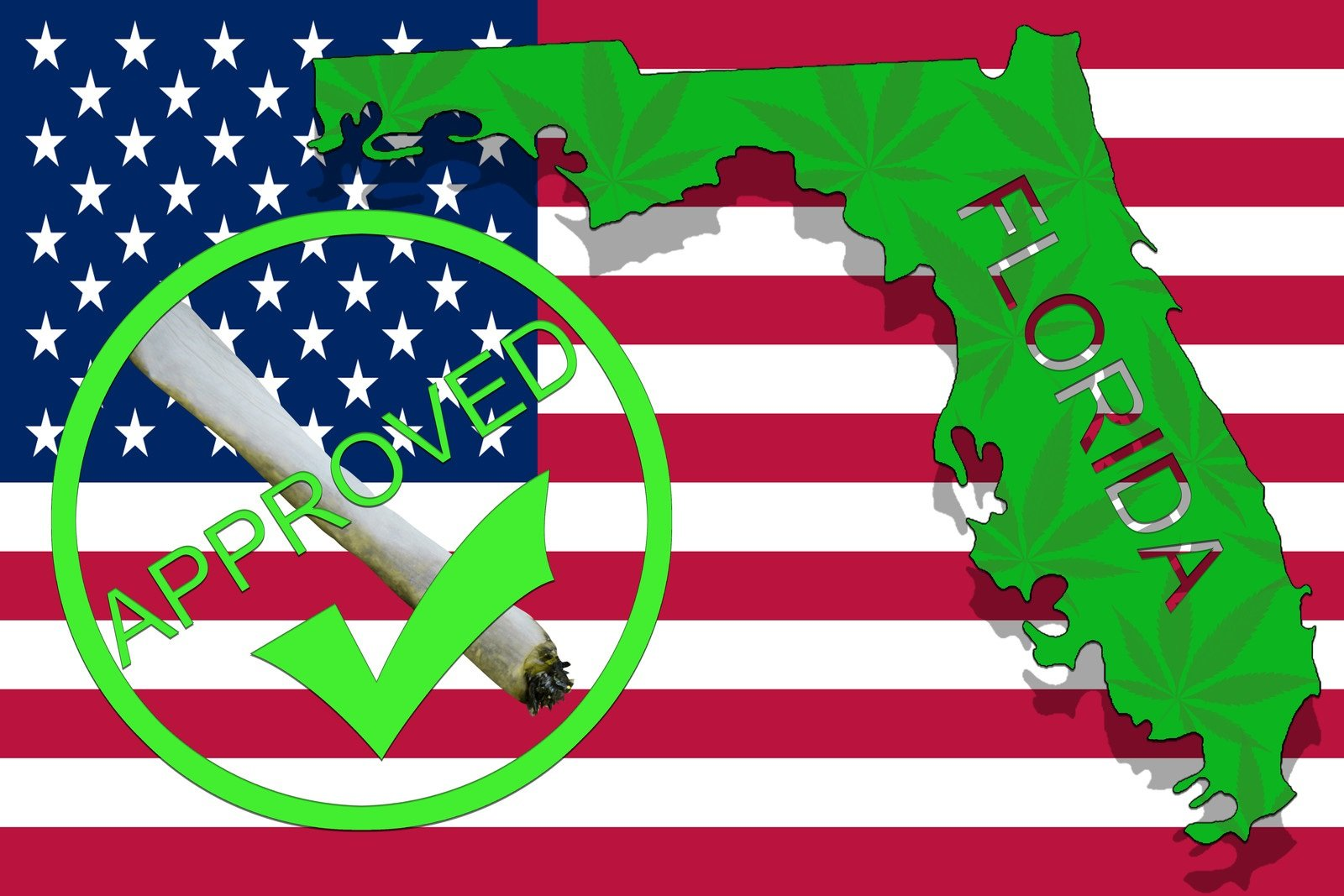 Florida cannabis lawyers