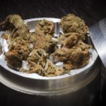 Best marijuana grinders. A marijuana grinder filled with weed.
