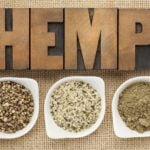 Hemp vs Cannabis Plant Differences