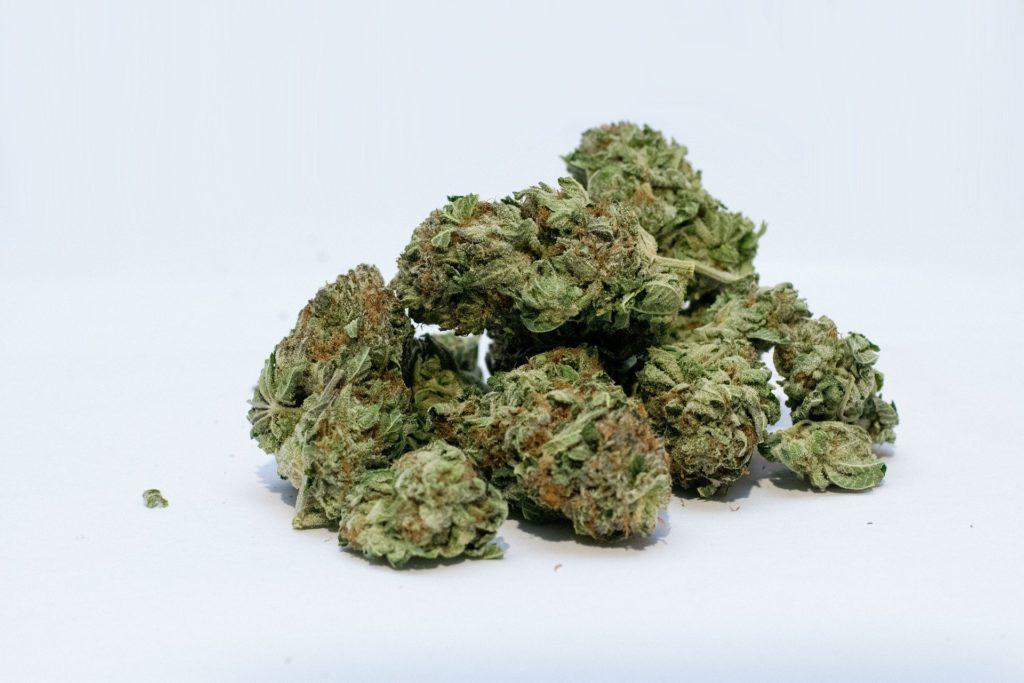 Strain info Maui Wowie. Marijuana buds