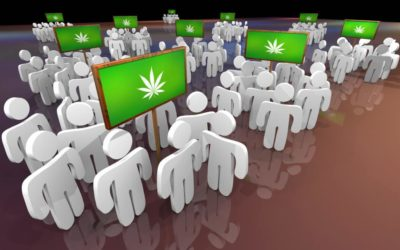 Best Marijuana Business Events 2019