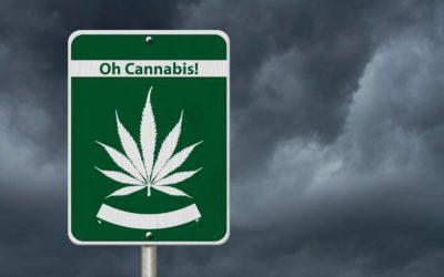 Canadian Medical Marijuana Products To Turn Recreational