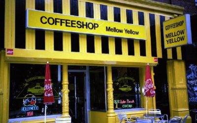 Top Cannabis Coffee Shops In Amsterdam