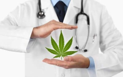 Top Cannabis Doctors in Denver