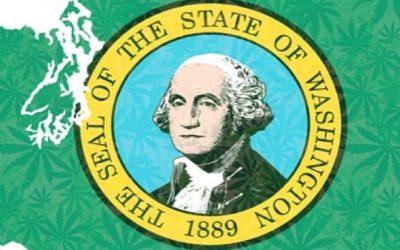 Top Cannabis Dispensaries in Washington State