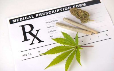 Distinctive Marijuana Dispensaries Across The US