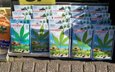 Top Cannabis Grow Shops in Oregon