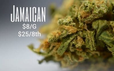 Best Jamaican Marijuana Strains