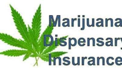 Best Marijuana Insurance Companies