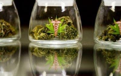 Top Massachusetts Cannabis Dispensaries